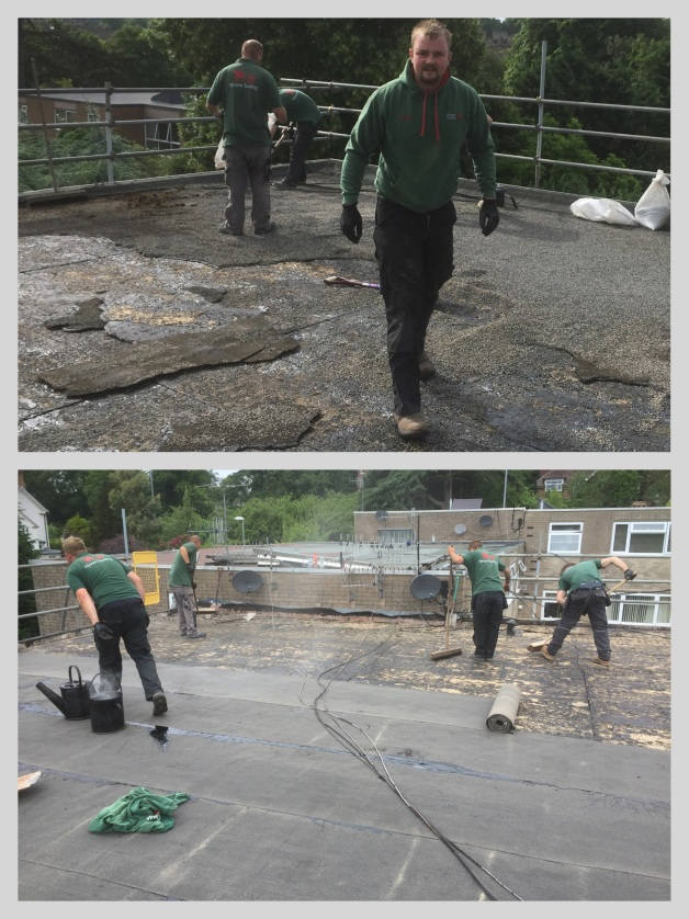 The Wyvern Roofing team removing an old felt roof, clearing and preparing for the installation of a new flat roof on a property in Bromyard, Herefordshire.